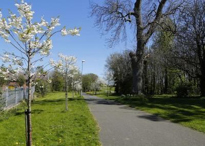 Castlefarm Park Shankill