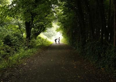 Laneway in Shankill