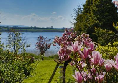 Roscommon Garden
